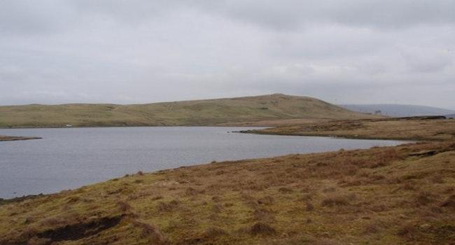 Turdale Water
