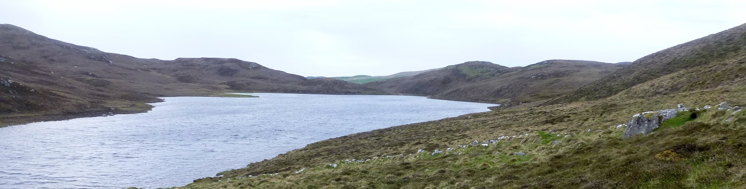 Bays Water