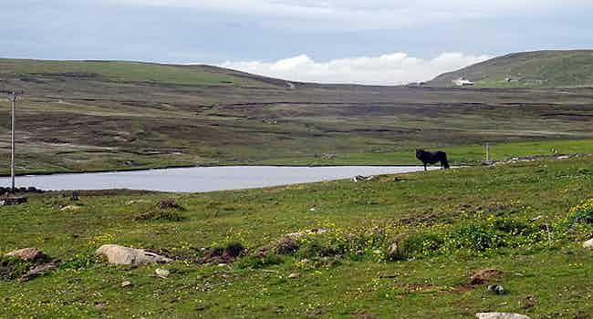 Loch of Arg