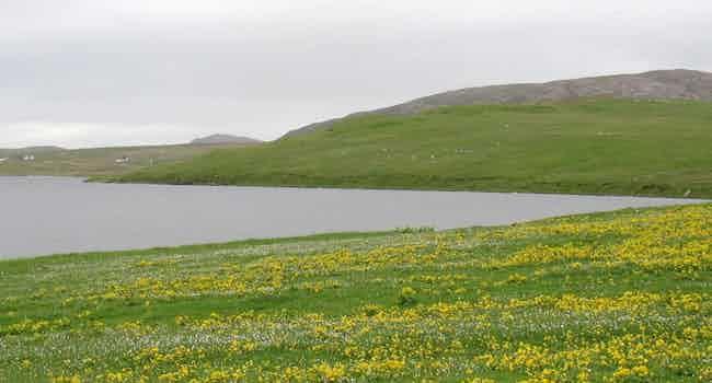 Loch of Flugarth