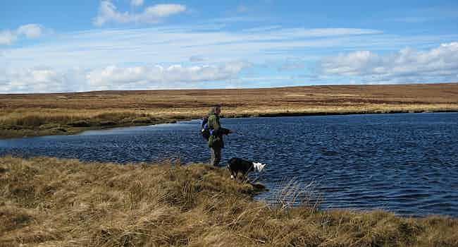 Loch nan Gall