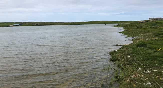 Bea Loch
